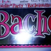 bachelorette hens night banner