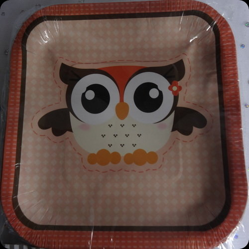 Owl Party plates, unisex baby shower party tableware