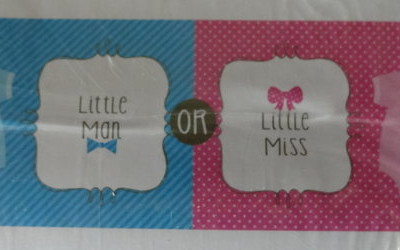 gender reveal baby shower banner themed decorations